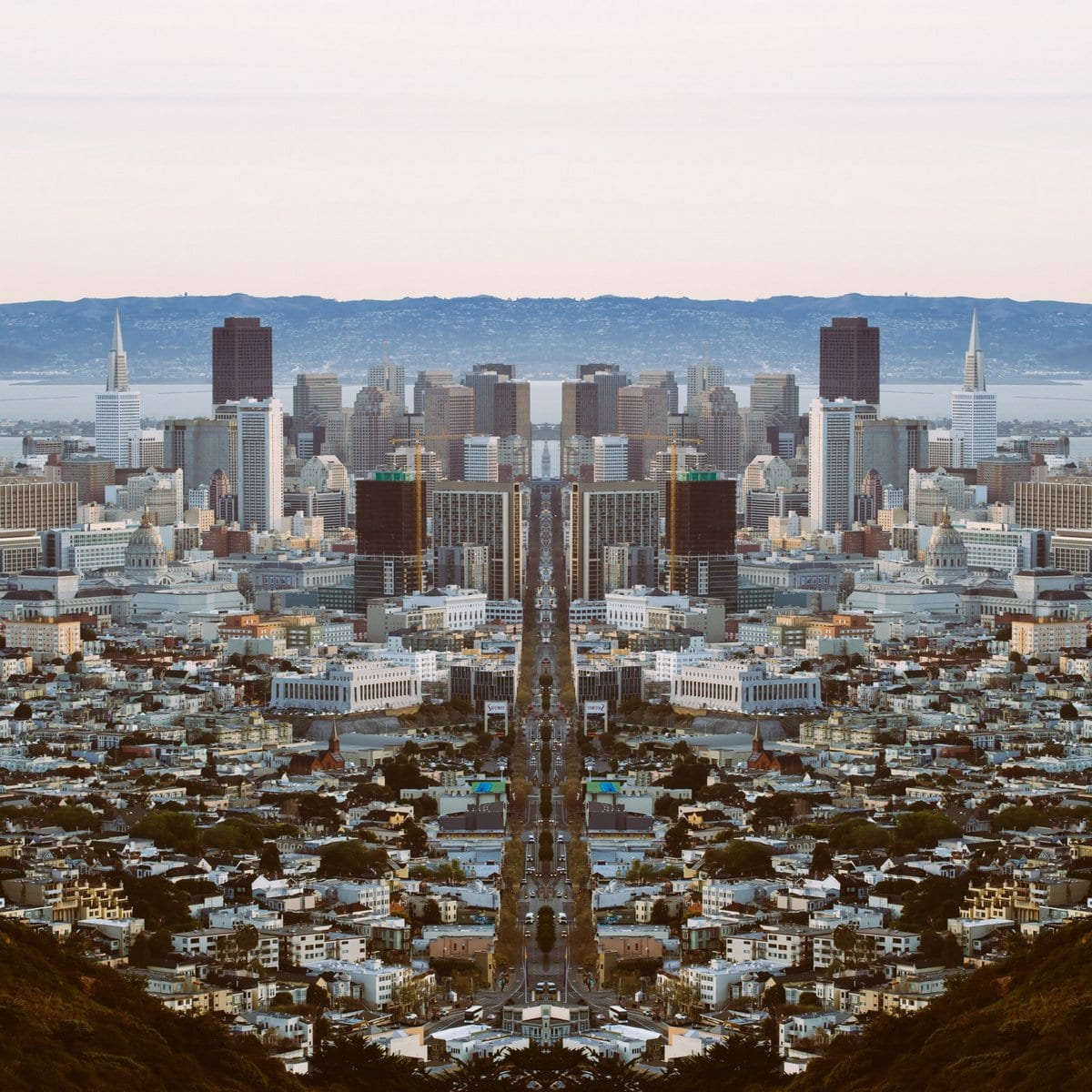 DigitalAnthill_Mirrored00027